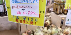 news_photo_205
